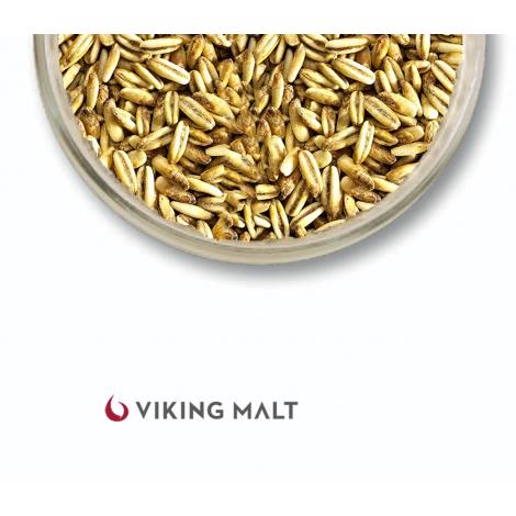Viking Auzas